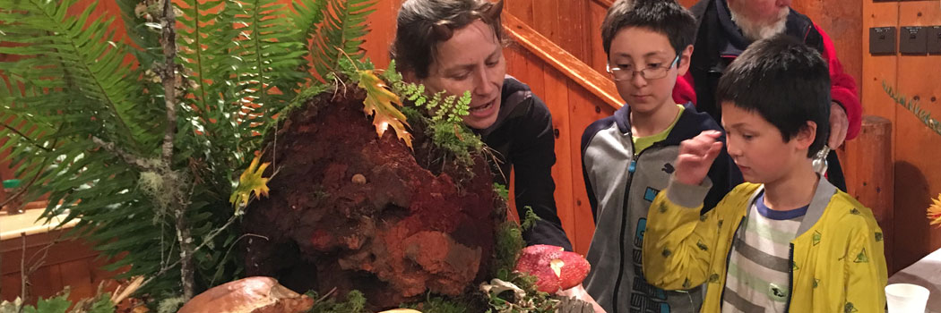 Learning about mushrooms of the Pacific Northwest